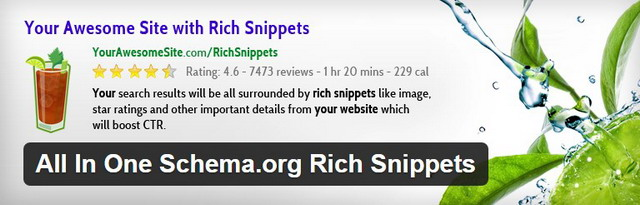wordpress rich snippets