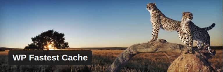 wp_fastest_cache