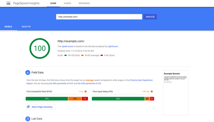 Google PageSpeed Insights_example